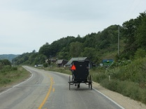 Amish in Southern WI