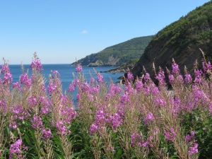 View from Meat Cove, Cape Breton