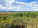 Colorado Land