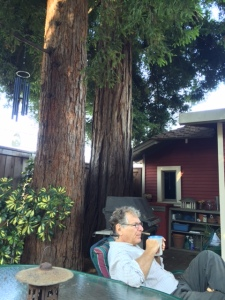 Neal sitting on his deck in the Redwoods.