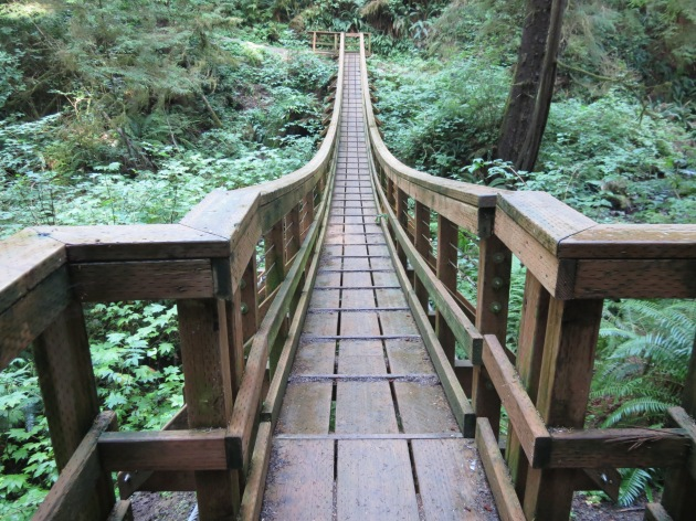 I love all bridges, This is a foot bridge on a hike I did at Cape Lookout.